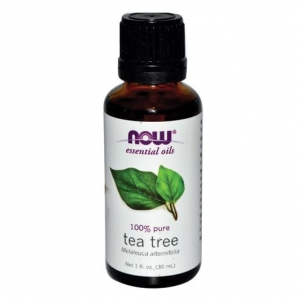 NOW Essential Oils Tea Tree Oil 100% Pure (118 mL) 나우 푸드 티트리 오일