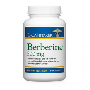 Dr. Julian Whitaker - Berberine 500 mg 90 Caps(90정)